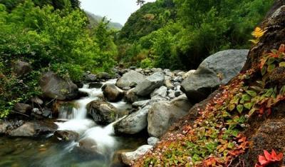 AZORES & MADEIRA – PARADISE ISLANDS